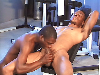 Hot black stud Koby Bird works his cock out on a gay ass in the gym